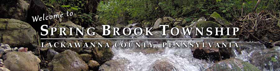 Spring Brook Township